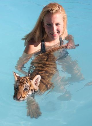 With tiger in pool